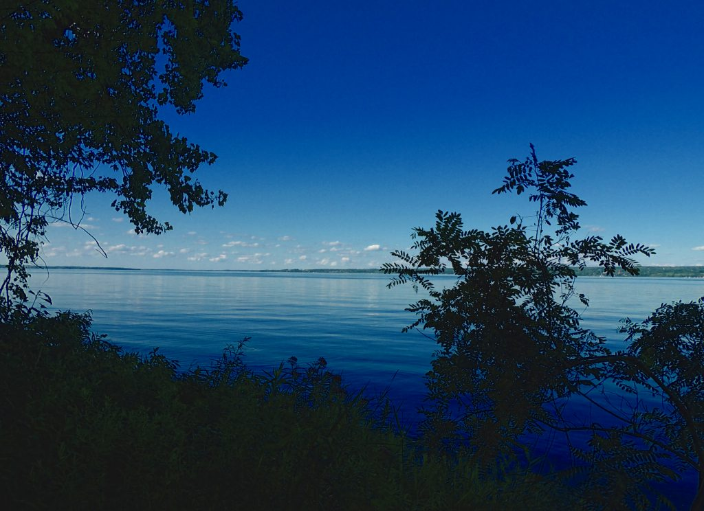 View of Cayuga Lake