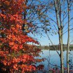 Dryden Lake Upstate NY