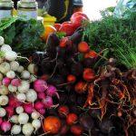 Farm Market in the Finger Lakes